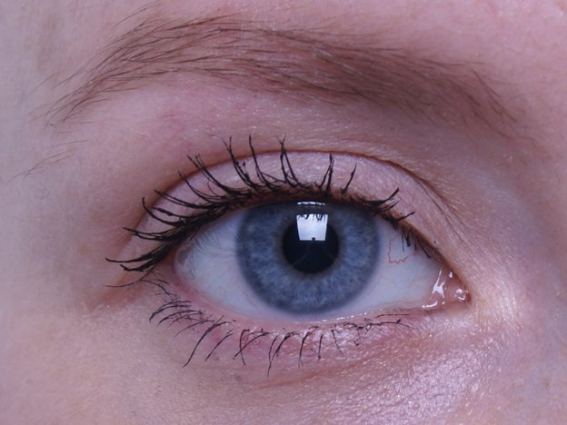 maybelline-great-lash-lots-of-lashes-mascara-swatch-eye
