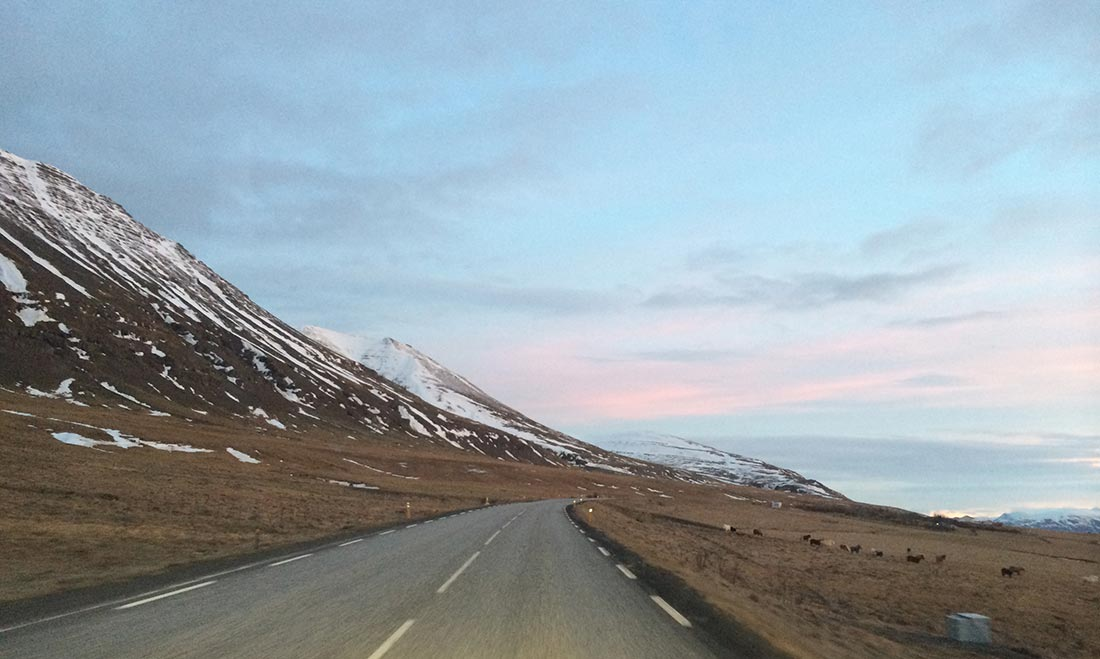 iceland-travel-road-morning
