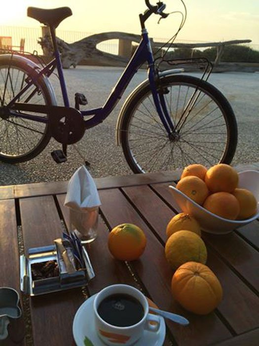 verdura-bike