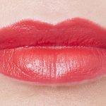 lips, macro, dior rouge, swatch, 663, desir