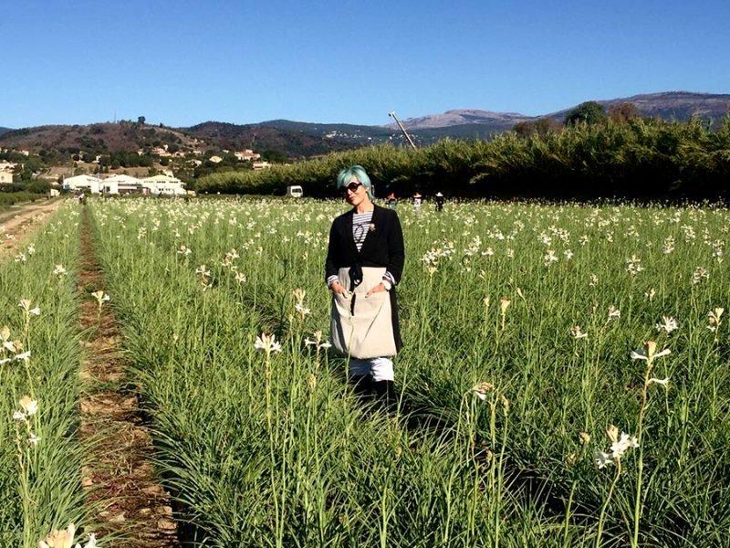 chanel-me-fields