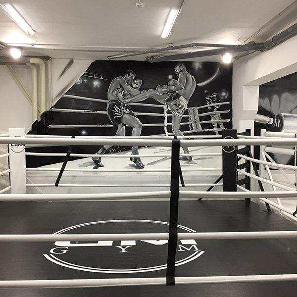 список боксерские клубы москвы