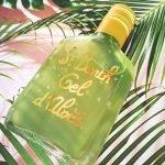 Гель алоэ вера с мятой Gel D'Aloes